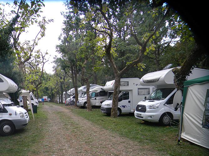 Camper Pitch
